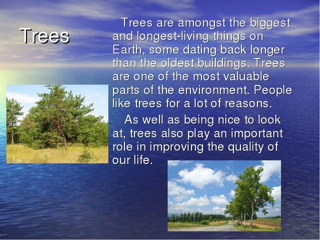 Trees Trees are amongst the biggest and longest-living things on Earth, some...