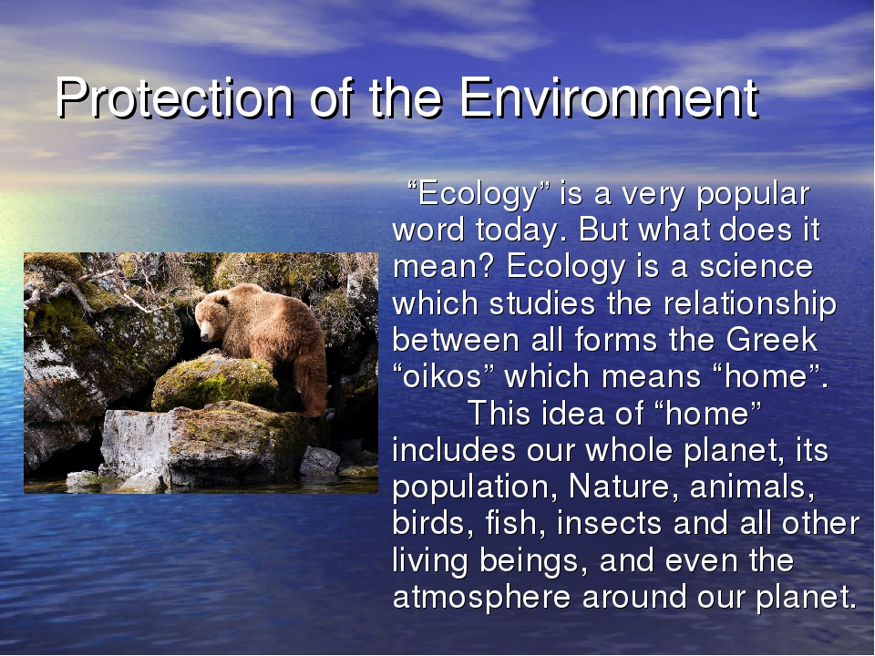 "Protection of the Environment ""Ecology"" is a very popular word today. But wha..."