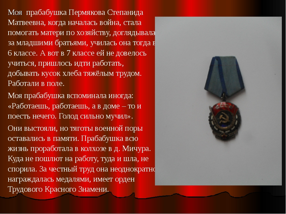Моя прабабушка Пермякова Степанида Матвеевна, когда началась война, стала пом...