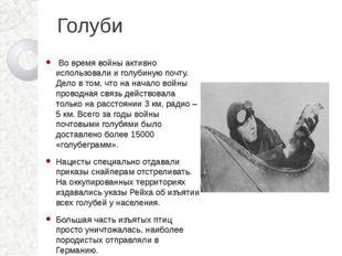Голуби Во время войны активно использовали и голубиную почту. Дело в том, чт