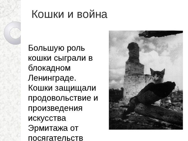 Кошки и война Большую роль кошки сыграли в блокадном Ленинграде. Кошки защища...