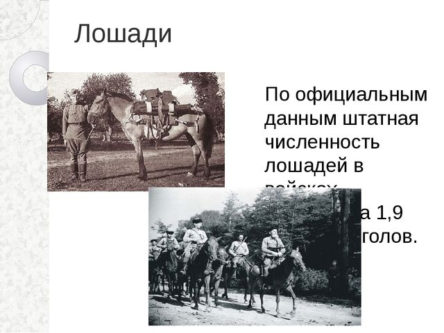 Лошади По официальным данным штатная численность лошадей в войсках составляла...