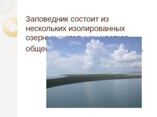 Заповедник состоит из нескольких изолированных озерных и степных участков общ