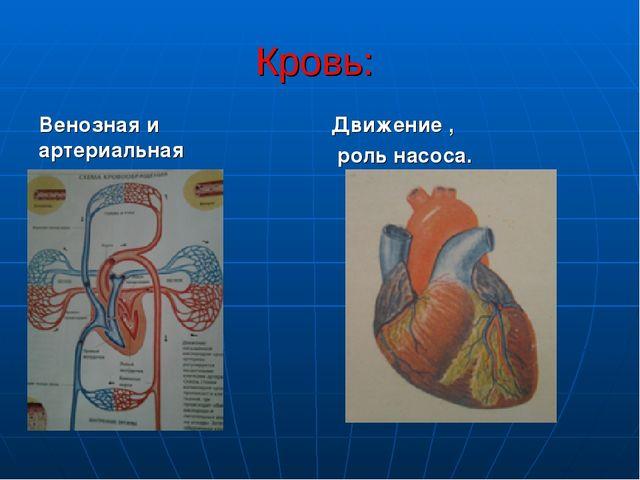 Кровь: Венозная и артериальная Движение , роль насоса.