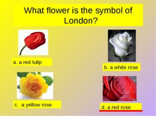 What flower is the symbol of London? d. a red rose b. a white rose a. a red t