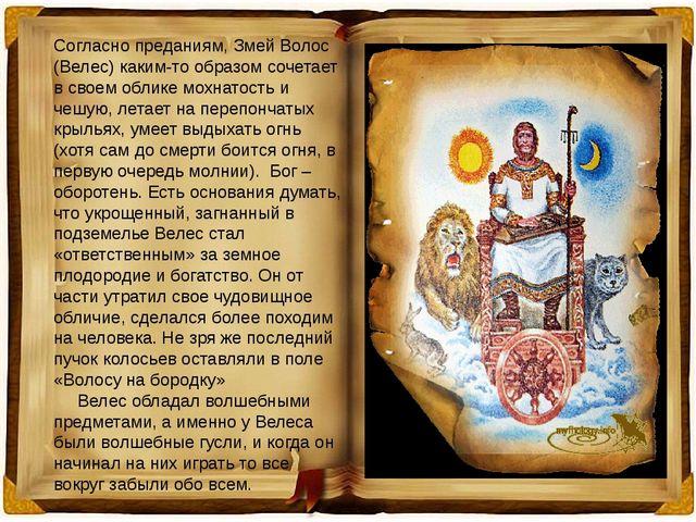 Согласно преданиям, Змей Волос (Велес) каким-то образом сочетает в своем обли...