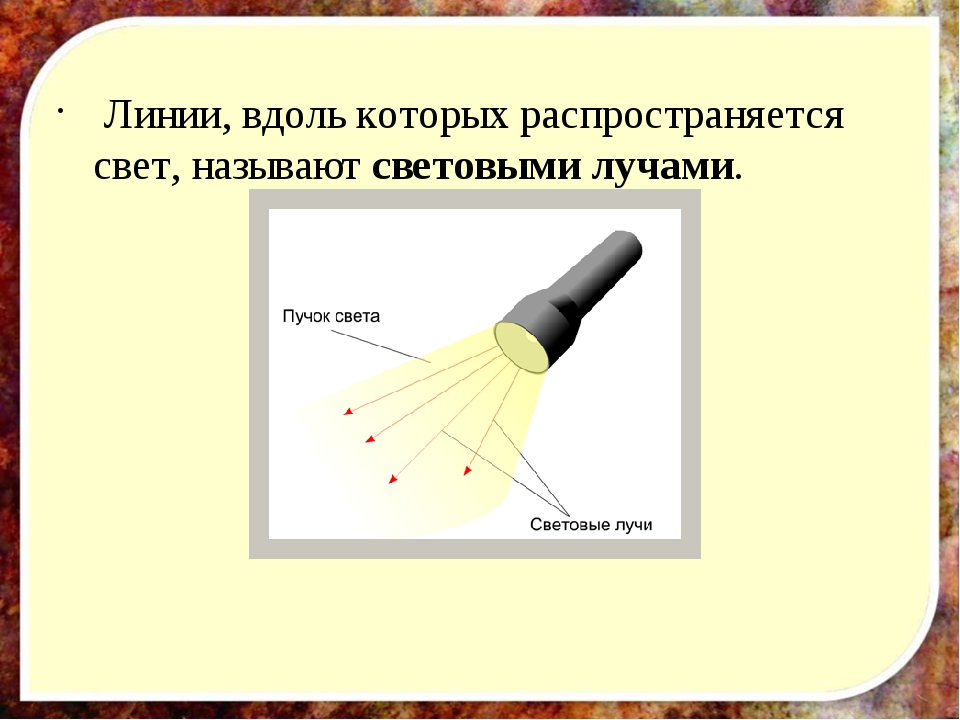 Линии, вдоль которых распространяется свет, называют световыми лучами.