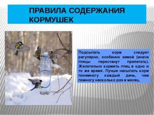 ПРАВИЛА СОДЕРЖАНИЯ КОРМУШЕК Подсыпать корм следует регулярно, особенно зимой