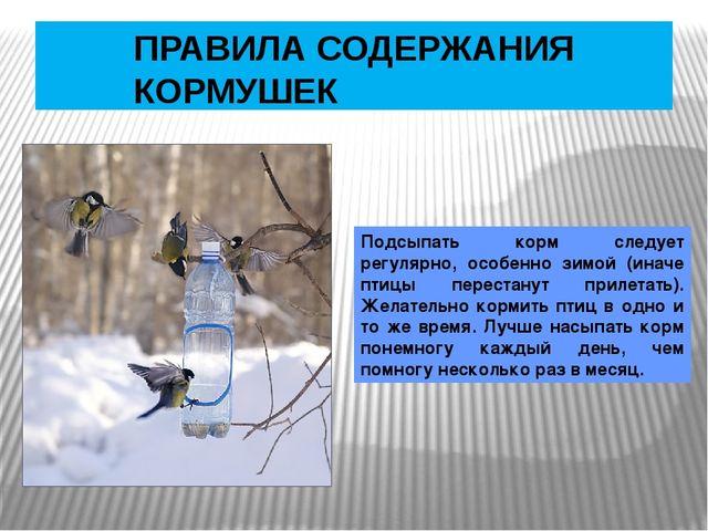 ПРАВИЛА СОДЕРЖАНИЯ КОРМУШЕК Подсыпать корм следует регулярно, особенно зимой...