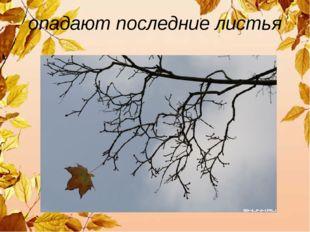 опадают последние листья