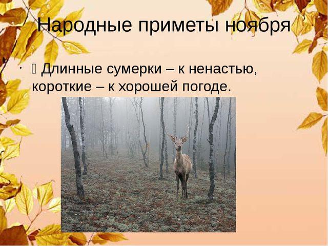 Народные приметы ноября Ÿ Длинные сумерки – к ненастью, короткие – к хорошей...