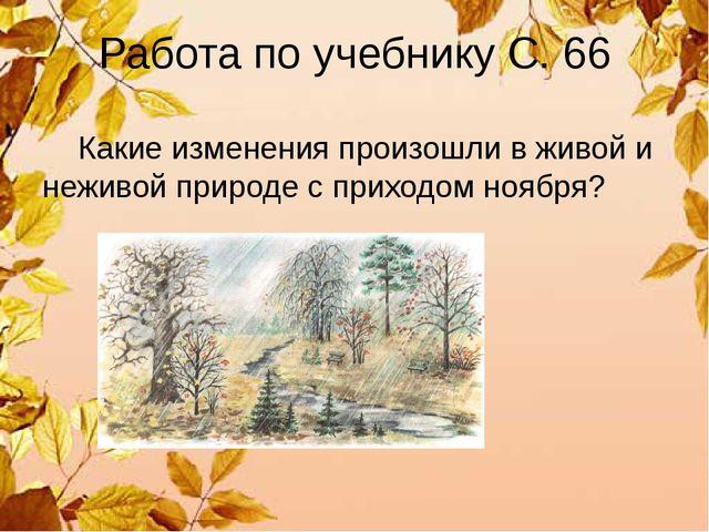 Работа по учебнику С. 66 Какие изменения произошли в живой и неживой природе...