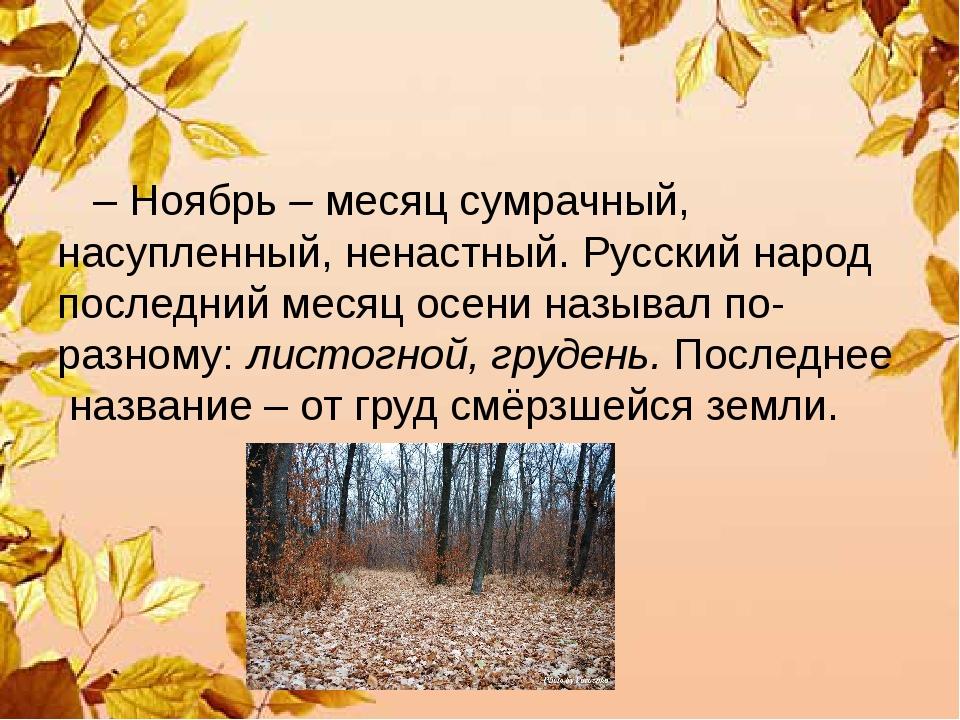 – Ноябрь – месяц сумрачный, насупленный, ненастный. Русский народ последний...