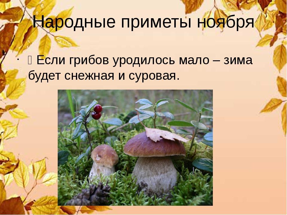 Народные приметы ноября Ÿ Если грибов уродилось мало – зима будет снежная и с...