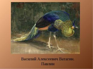 Василий Алексеевич Ватагин. Павлин