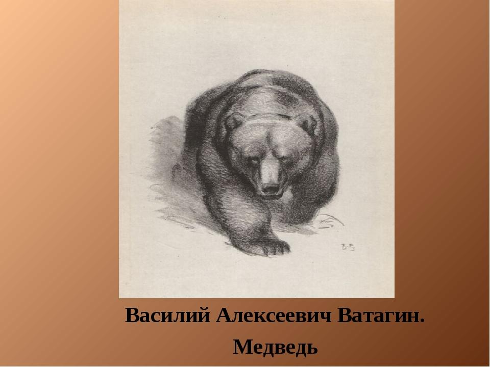 Василий Алексеевич Ватагин. Медведь