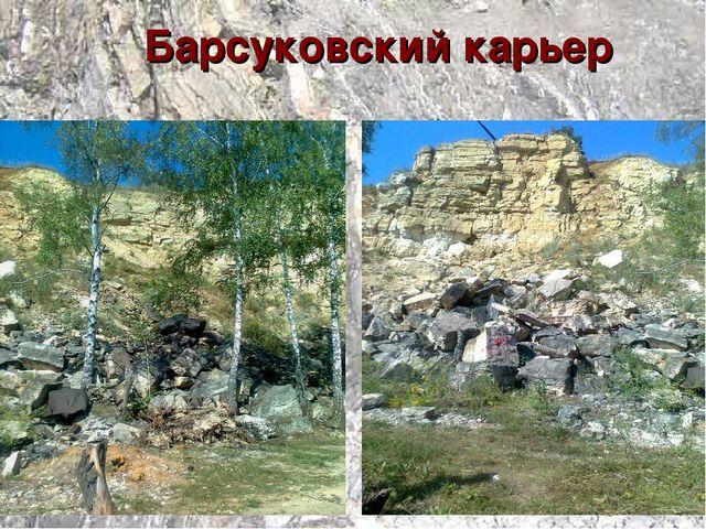 Барсуковский карьер
