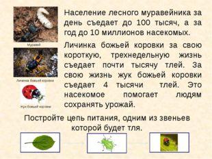 Население лесного муравейника за день съедает до 100 тысяч, а за год до 10 ми