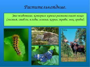 Растительноядные. Это животные, которым нужна растительная пища (листья, сте