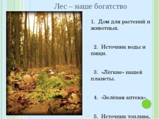 1. Дом для растений и животных. 2. Источник воды и пищи. 3. «Лёгкие» нашей п