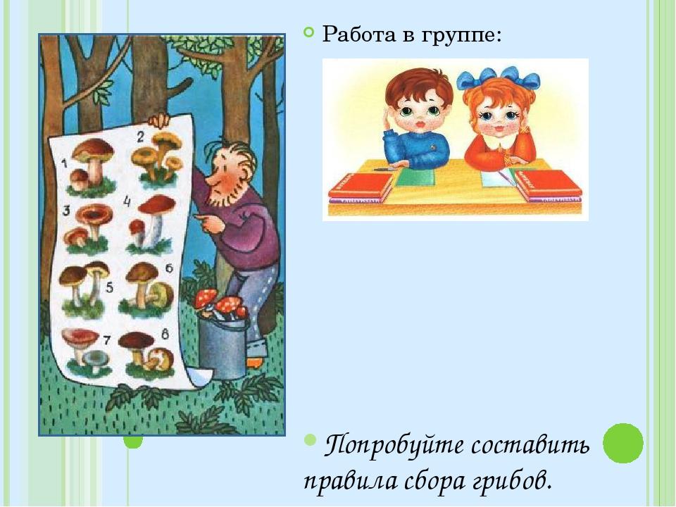 Работа в группе: Попробуйте составить правила сбора грибов.