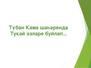 Түбән Кама шәһәрендә Тукай эзләре буйлап...