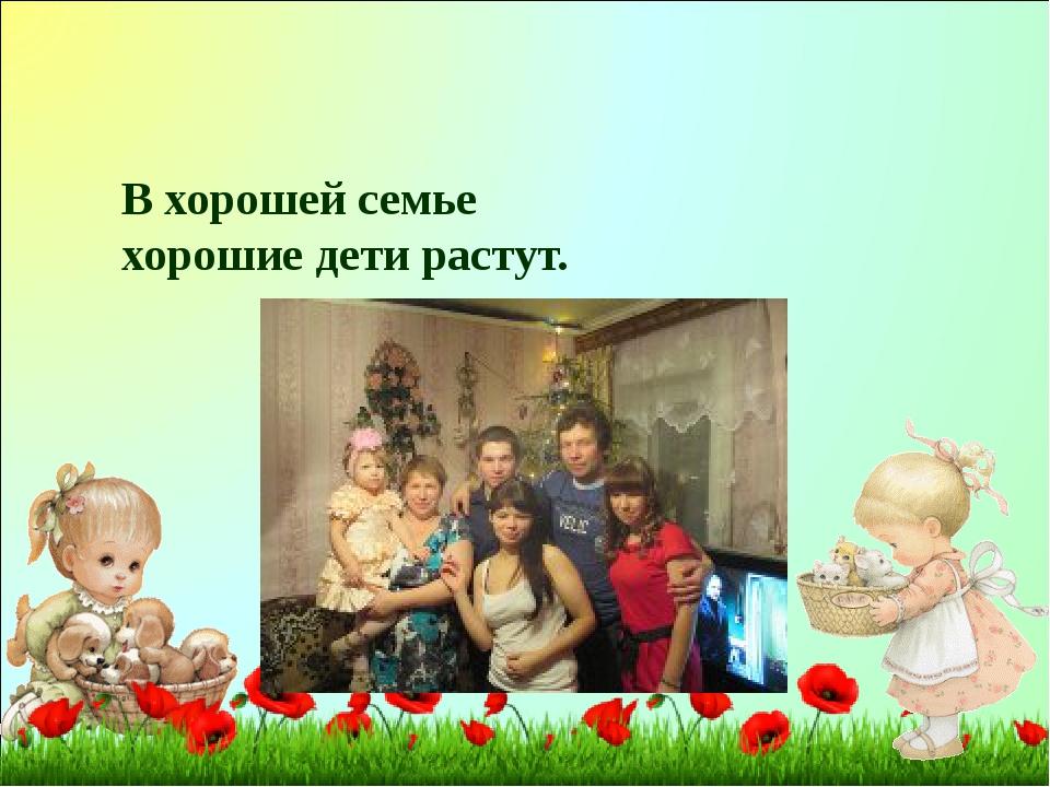В хорошей семье хорошие дети растут.
