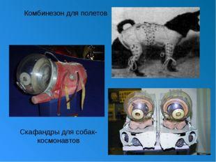 Комбинезон для полетов Скафандры для собак-космонавтов