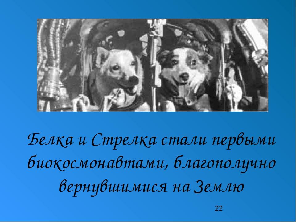 Белка и Стрелка стали первыми биокосмонавтами, благополучно вернувшимися на...