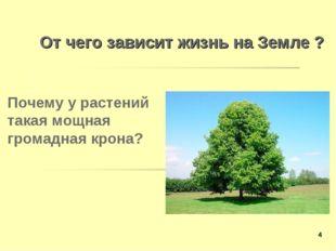 От чего зависит жизнь на Земле ? Почему у растений такая мощная громадная кро