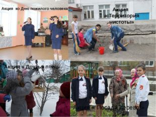 Акция ко Дню пожилого человека Акция « Территория чистоты» Акция « Друзья пт