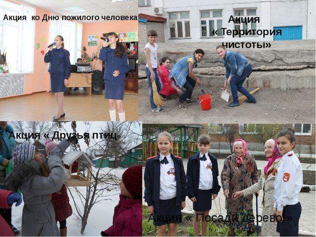 Акция ко Дню пожилого человека Акция « Территория чистоты» Акция « Друзья пт...