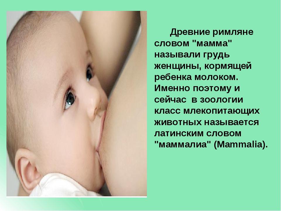 """Древние римляне словом """"мамма"""" называли грудь женщины, кормящей ребенка моло..."""