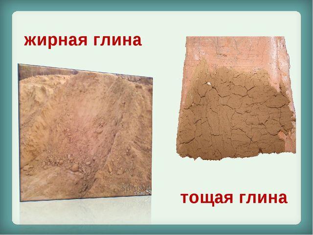 жирная глина тощая глина