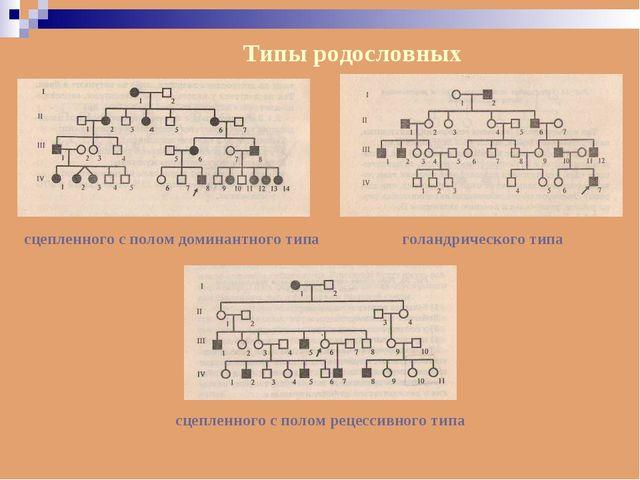 Типы родословных сцепленного с полом доминантного типа голандрического типа с...
