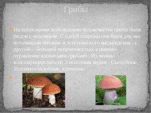 На протяжении всей истории человечества грибы были рядом с человеком. С одной