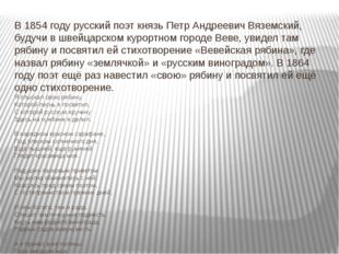 В 1854 году русский поэт князьПетр Андреевич Вяземский, будучи в швейцарском