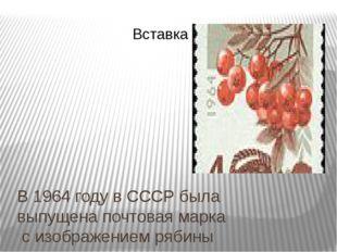 В 1964 году вСССРбыла выпущенапочтовая маркас изображением рябины