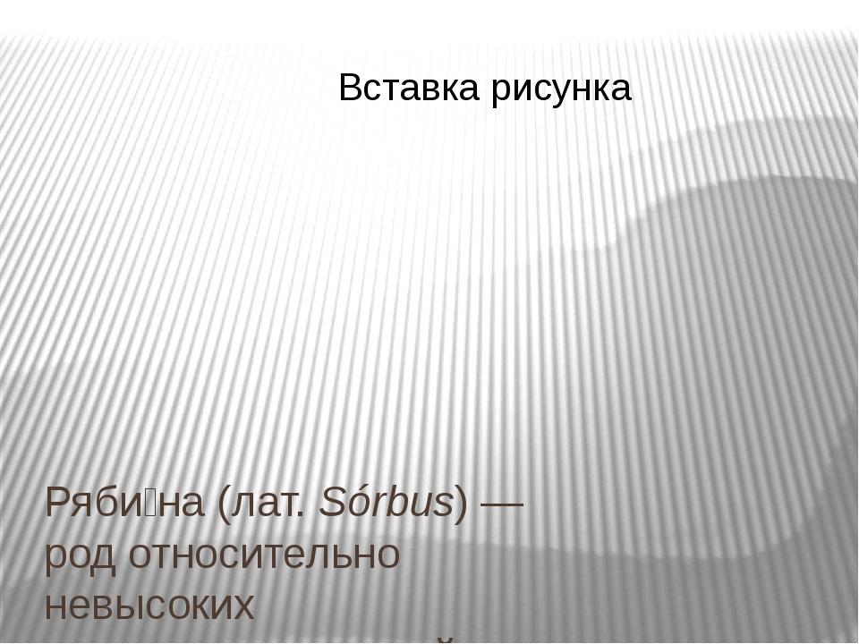 Ряби́на(лат.Sórbus)—родотносительно невысокихдревесных растенийсемейст...