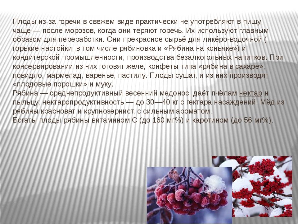 Плоды из-за горечи в свежем виде практически не употребляют в пищу, чаще— по...