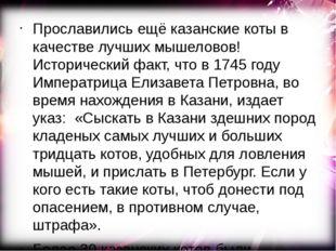 Прославились ещё казанские коты в качестве лучших мышеловов! Исторический фак