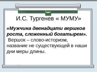 И.С. Тургенев « МУМУ» «Мужчина двенадцати вершков роста, сложенный богатырем
