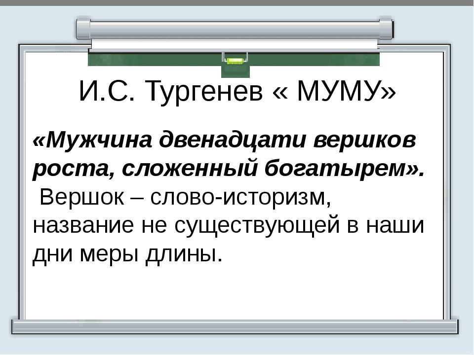 И.С. Тургенев « МУМУ» «Мужчина двенадцати вершков роста, сложенный богатырем...