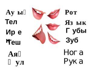 Яз́ык Ир́ен Ѓубы Тел Теш Зуб Рот Ау́ыҙ Ноѓа Руќа Аяҡ Ҡул