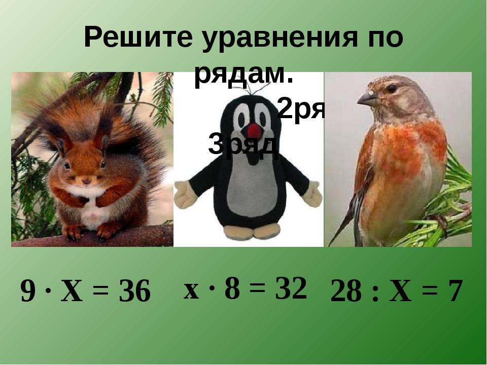 Решите уравнения по рядам. 1ряд 2ряд 3ряд 9 · X = 36 x · 8 = 32 28 : X = 7
