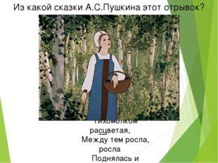Из какой сказки А.С.Пушкина этот отрывок? Но царевна молодая Тихомолком расцв