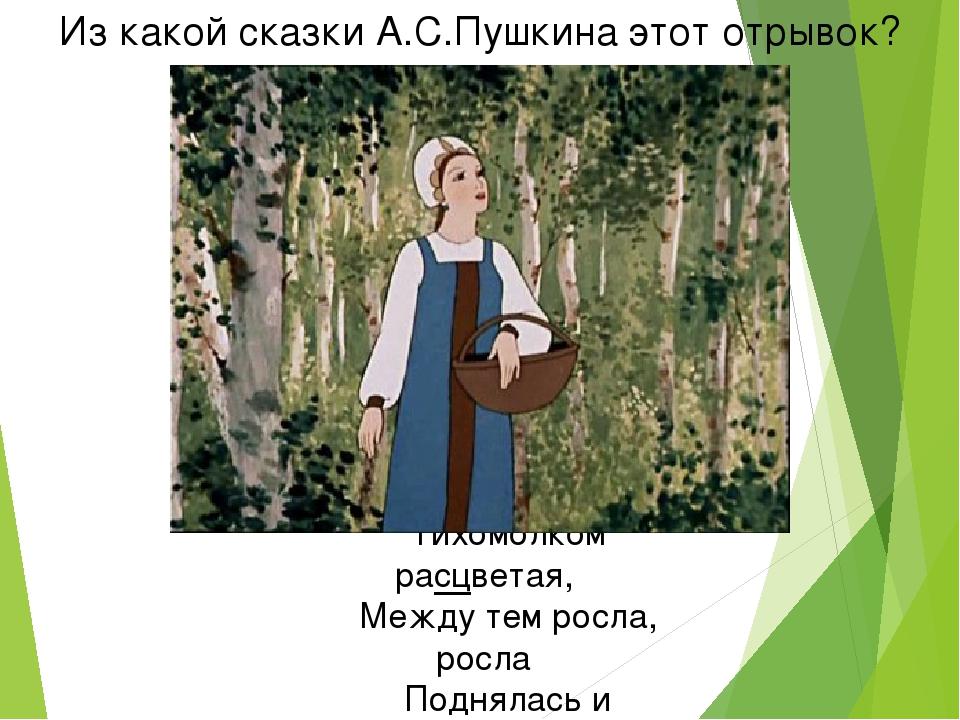 Из какой сказки А.С.Пушкина этот отрывок? Но царевна молодая Тихомолком расцв...