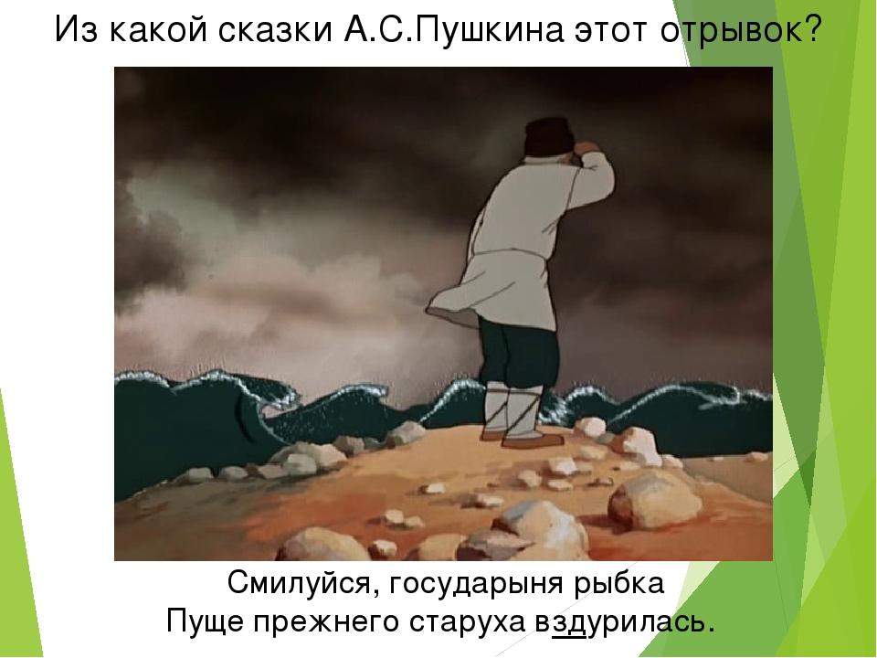Из какой сказки А.С.Пушкина этот отрывок? Смилуйся, государыня рыбка Пуще пре...