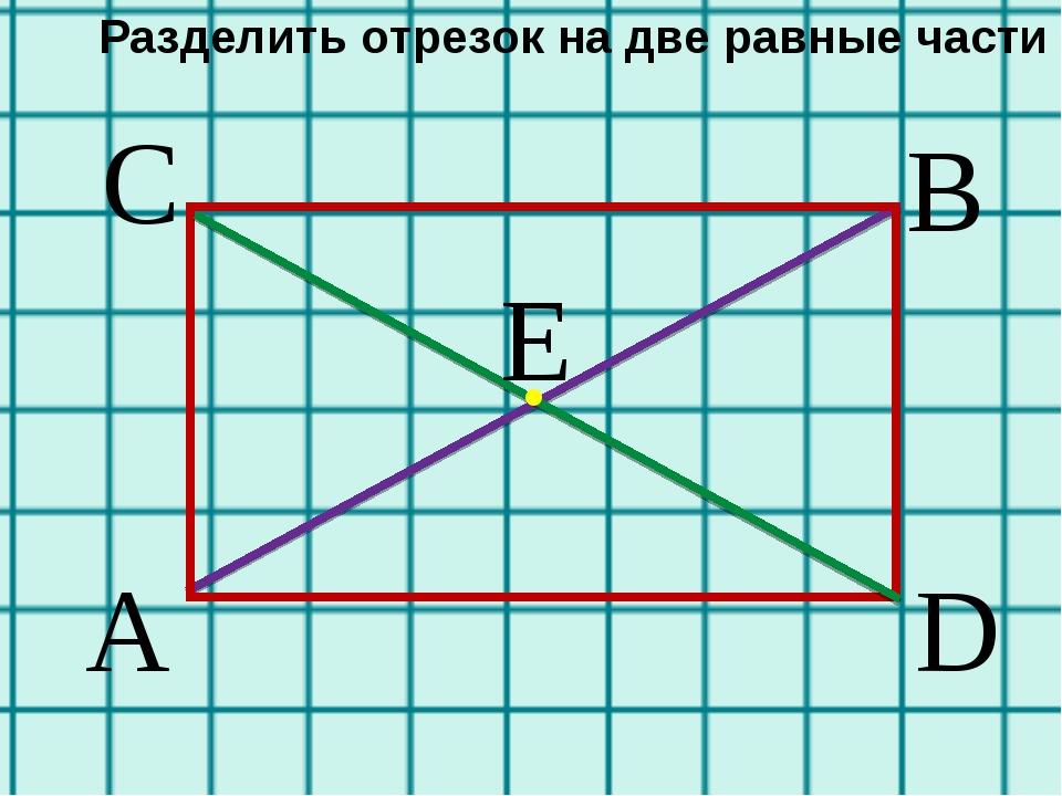 A В С D E . Разделить отрезок на две равные части