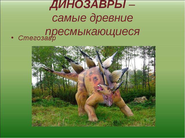 ДИНОЗАВРЫ – самые древние пресмыкающиеся Стегозавр